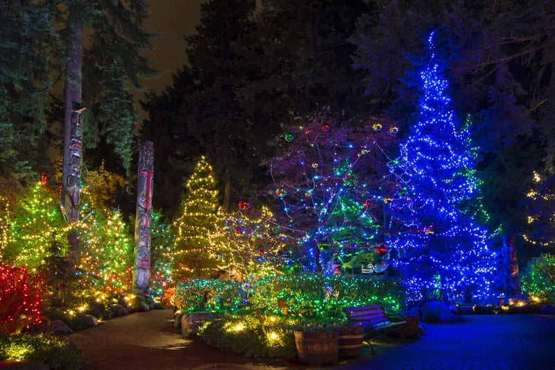 Canyon Lights at the Capilano Suspension Bridge Park North Vancouver