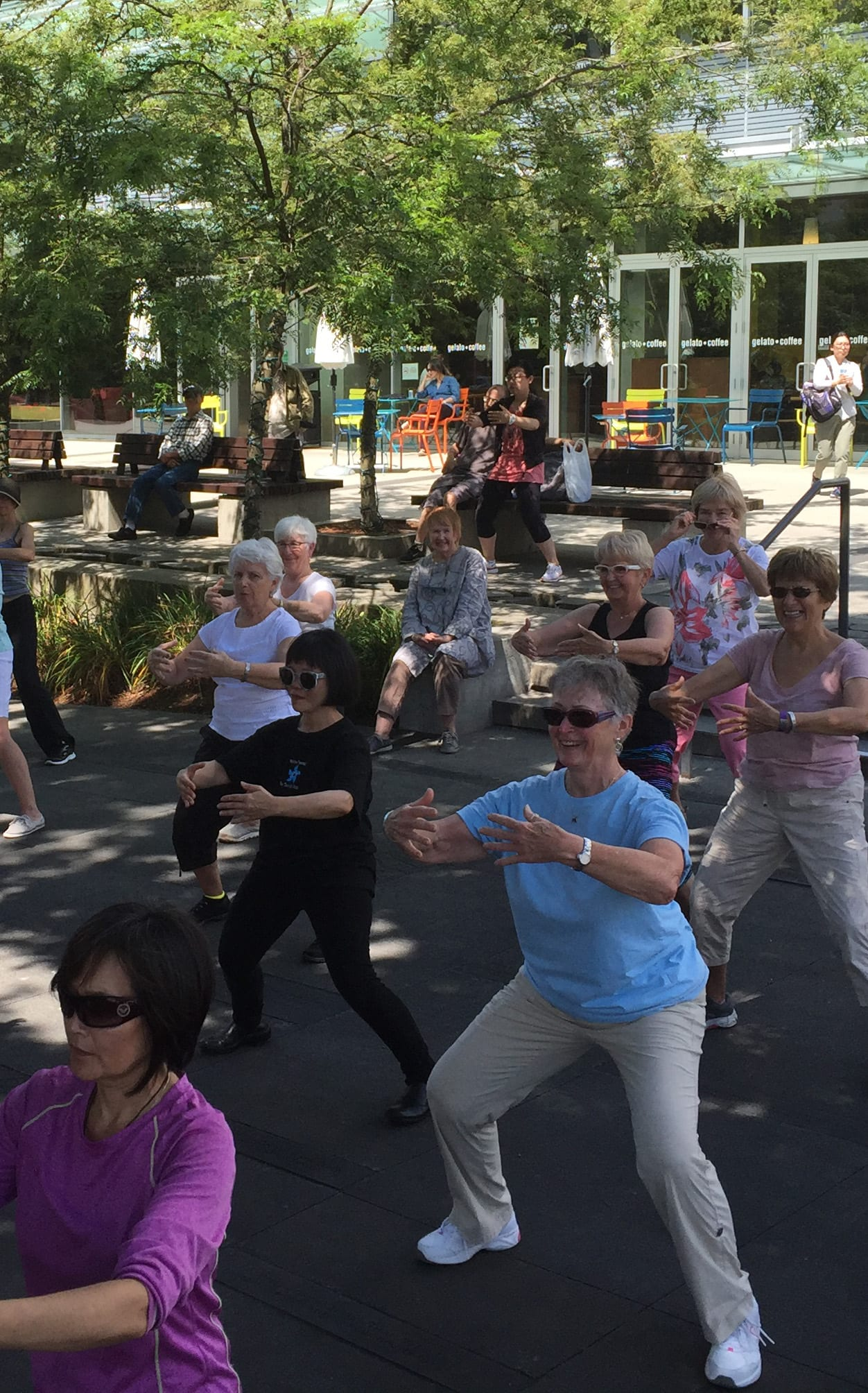 Health Qigong and Tai Chi Fusion – Free to the Public