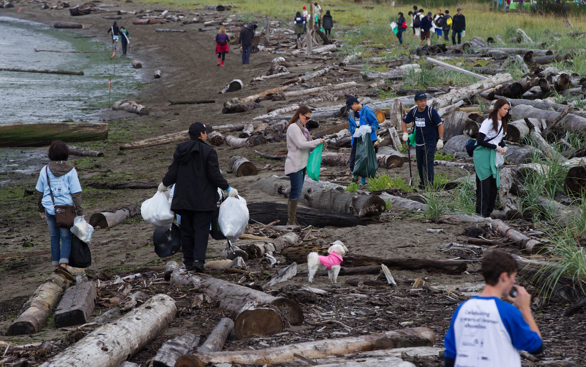 B.C. Shorelines Need Your Help in Vancouver