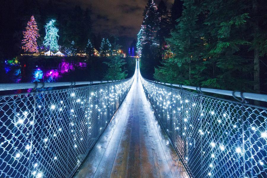Canyon Lights Sparkle at Capilano Suspension Bridge Park North Vancouver
