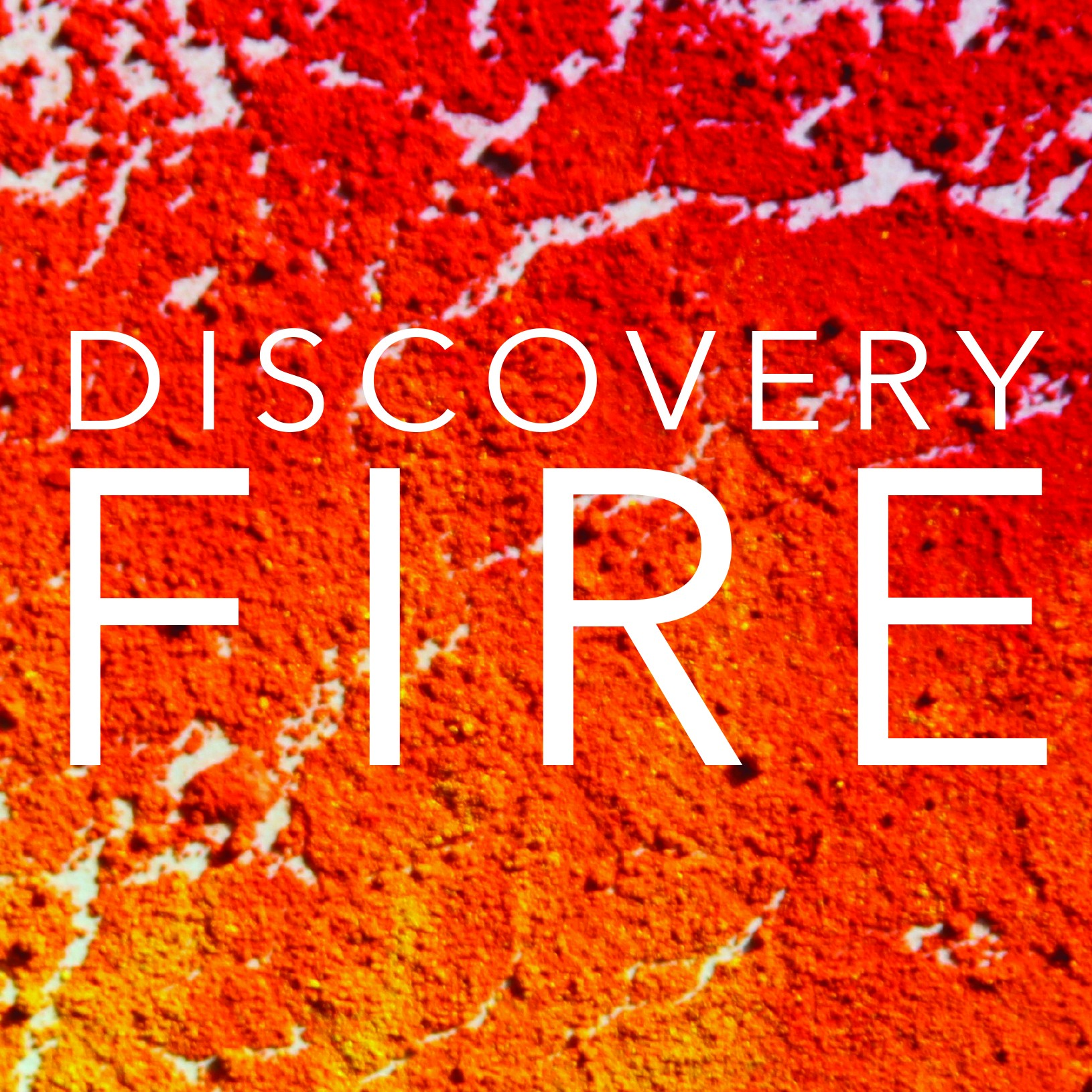 Discovery FIRE Exhibition at the Seymour Art Gallery