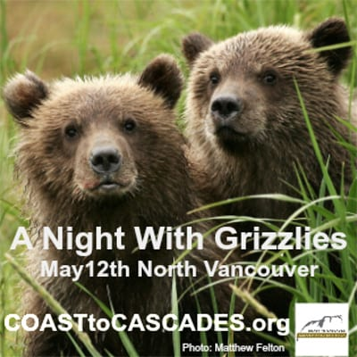 A Night With Grizzlies at the Centennial Theatre