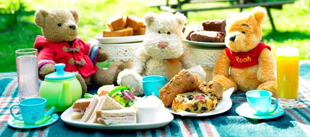 9th Annual Teddy Bear Picnic at St Andrew's Park North Vancouver