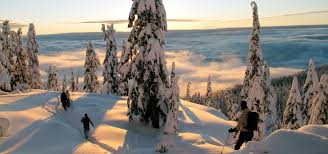 Winter Watershed Snowshoe Tours on Mount Seymour North Vancouver
