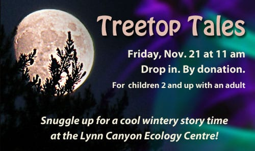 Treetop Tales at the Lynn Canyon Ecology Centre