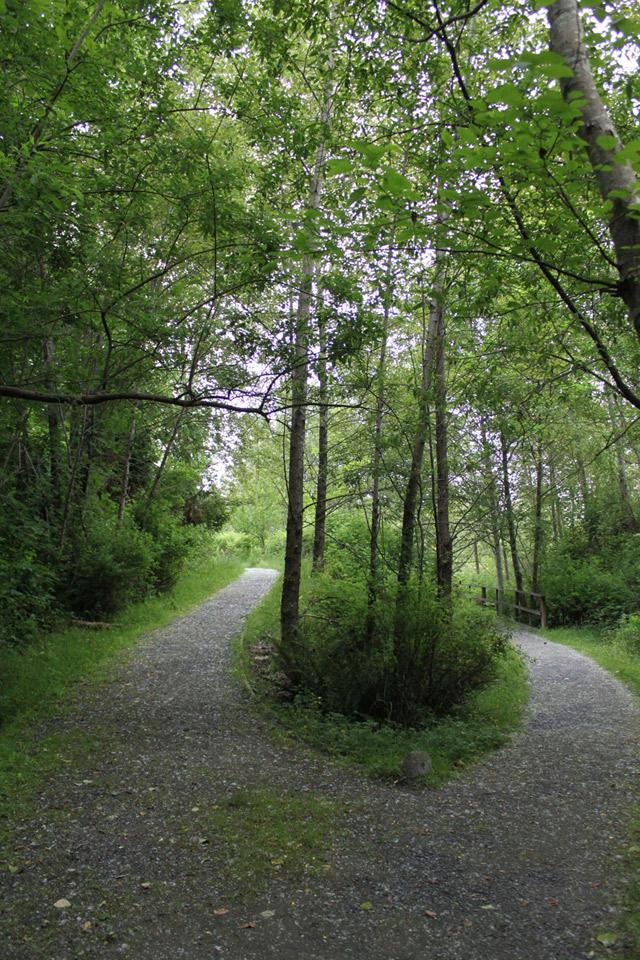 Wild Bird Trust Nature Walk at Maplewood Flats Conservation Area